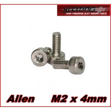 STAINLESS STEEL SCREWS ALLEN M2 X 4