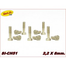 SCREWS M2,2 x 8mm. SMALL HEAD
